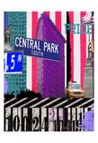 NY Central Park Kunst af Marilu Windvand