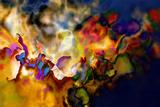 Fiery Fotografie-Druck von Ursula Abresch