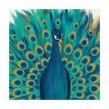 Proud as a Peacock I Kunstdrucke von Veronique Charron