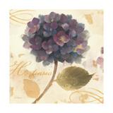 Abundant Hydrangea II Prints by Albena Hristova