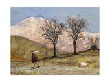 Walking with Mansfield Giclee Print by Sam Toft