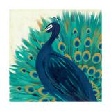 Proud as a Peacock II Pôsteres por Veronique Charron