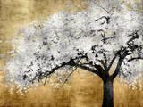 Silver Blossoms Pôsteres por Kate Bennett