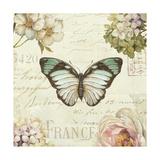 Marche de Fleurs Butterfly II Prints by Lisa Audit