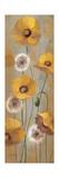 Spring Poppies I Kunstdrucke von Silvia Vassileva