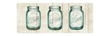 Flea Market Mason Jars Panel I V.2 Reproduction giclée Premium par Hugo Wild