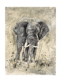 The Majestic One Premium Giclee Print by Marta Wiley