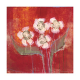 Orchid Study 9 Premium Giclee Print by Maeve Harris
