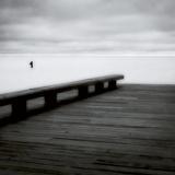 Wooden Pier Premium fotoprint van Jamie Cook