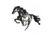 Horse H1 Premium Giclee Print by Chris Paschke