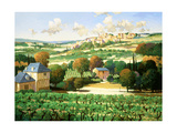 Vineyards of Provence Premium Giclee Print by Max Hayslette