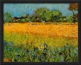 Vista de Arles com lírios  Posters por Vincent van Gogh