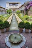 Spain, Granada. Patio de la Acequia at Generalife garden. Fotografisk tryk af Julie Eggers