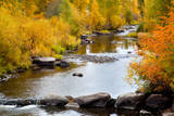 Yampa River in autumn. Reproduction photographique par Larry Ditto