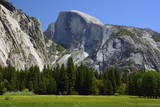 Meadow below Half Dome in Yosemite National Park, California, USA Photographic Print by Michel Hersen