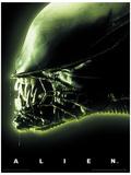 Alien- Head Green Lámina maestra
