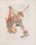 Divine Comedie, Enfer 29: Les Falsificateurs Keräilyvedos tekijänä Salvador Dalí
