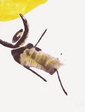 Insecte Særudgave af Pierre Tal-Coat