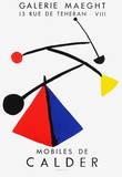 Expo Mobiles Reproduction pour collectionneur par Alexander Calder