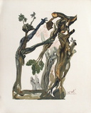 Divine Comedie, Enfer 13: La Forêt Des Suicidés Samletrykk av Salvador Dalí