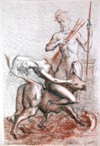 Metamorfosi di Ovidio 05 Collectable Print by Marcello Tommasi