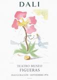 Teatro Museo Figueras 3 Sammlerdrucke von Salvador Dalí