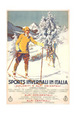 Winter Sports in Italy Poster