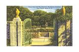 Brookgreen Gardens, Myrtle Beach Print