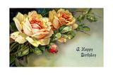 Floribunda Roses Pósters