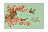 Best Wishes, Bird House Affiches