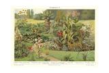 Assortment of Garden Plants Affiches
