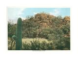 Picture Rocks Near Tucson Kunstdrucke
