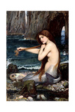 Mermaid Braiding Hair Prints