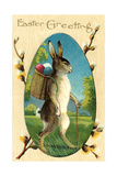 Bipedal Rabbit Prints