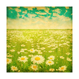 Vintage Photo of Daisy Field and Cloudy Sky Prints by  Elenamiv
