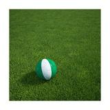 Nigerian Soccerball Lying on Grass Plakater af  zentilia