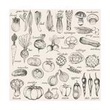 Hand-Drawn Vegetables Juliste tekijänä  Nikiparonak