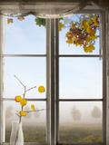 Autumn Landscape Viewed Through Window Fotografie-Druck von  PinkBadger
