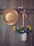 Rustic Shed Door with Hanging Straw Hat and Bucket of Yellow Roses Photographic Print by  Chris_Elwell