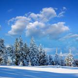 Winter Landscape with Snow in Mountains Carpathians, Ukraine Photographic Print by  Kotenko