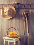 Rustic Country Shed Interior with Freshly Picked Yellow Roses in Basket Photographic Print by  Chris_Elwell