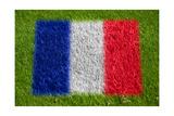 Flag of France on Grass Plakater av  raphtong