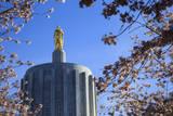 USA, Oregon, Salem, the Oregon State Capitol and Cherry Blossoms. Fotografie-Druck von Rick A. Brown