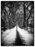 Walking on a Path in Central Park in Winter Photographic Print by Philippe Hugonnard