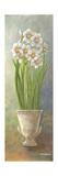 2-Up Narcissus Vertical Poster von Wendy Russell