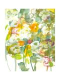 Spring has Sprung II Reproduction giclée Premium par Jodi Fuchs