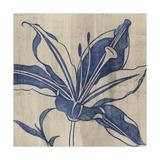 Indigo Lily Prints by Chariklia Zarris