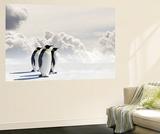 Emperor Penguins In Antarctica Poster géant par Jan Martin Will