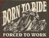 Born to Ride Tin Sign Tin Sign