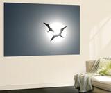 Magnificent Frigatebirds in Flight over Isla Iguana Poster géant par Michael Melford